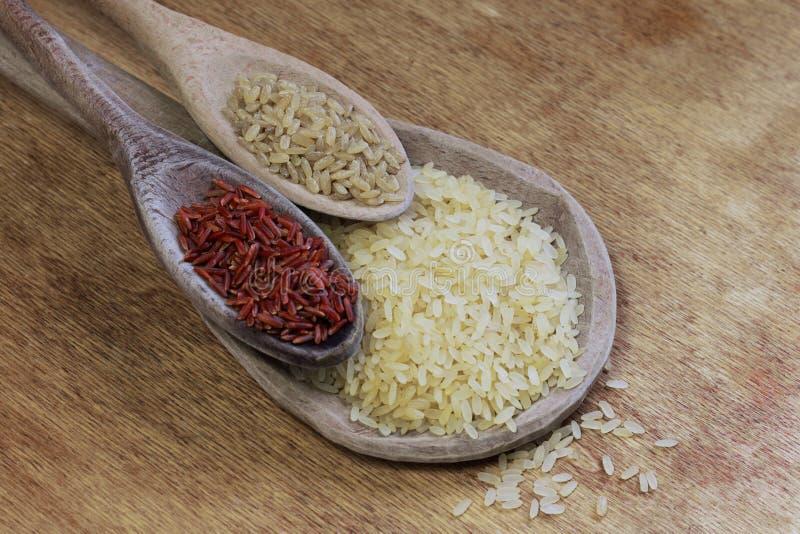 Three rice variety stock images