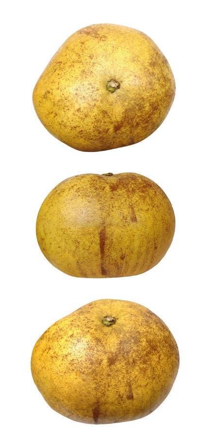 Three views of pomelo