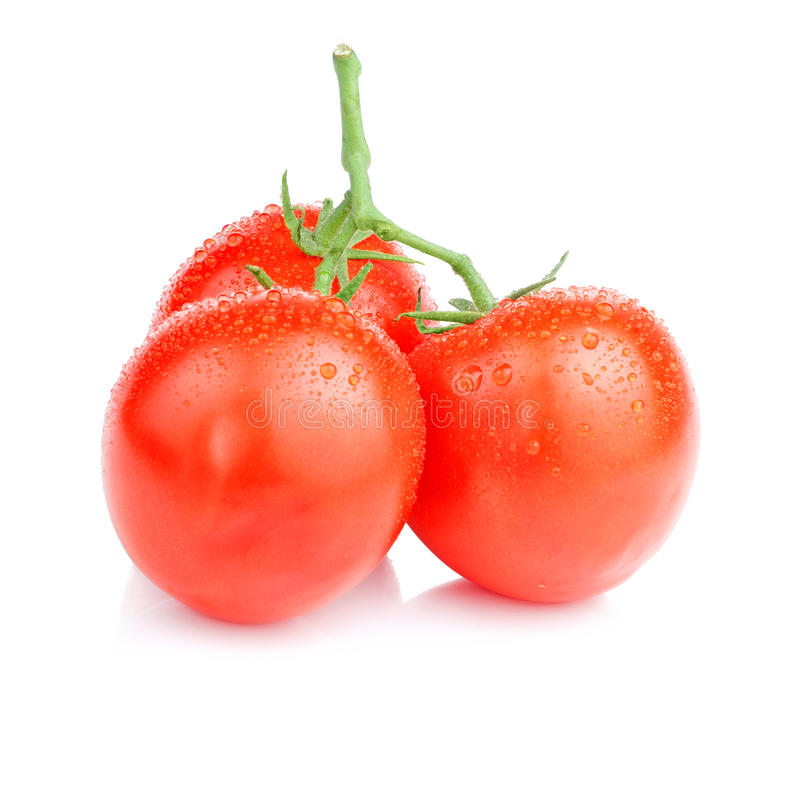 Free Three Vine Fresh Juicy Tomato With Water Droplets Royalty Free Stock Photography - 25430337