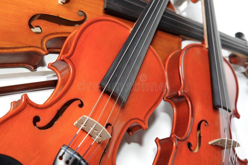 Three violins royalty free stock image