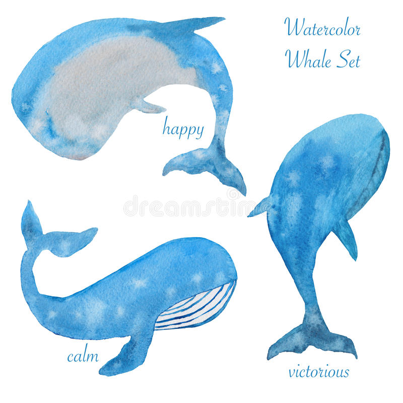 Three watercolor whales vector illustration