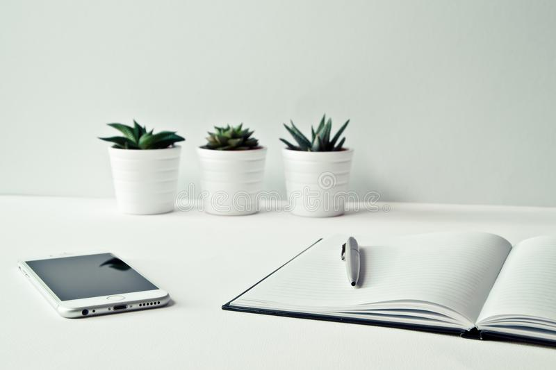 Three White Ceramic Pots With Green Leaf Plants Near Open Notebook With Click Pen on Top stock images