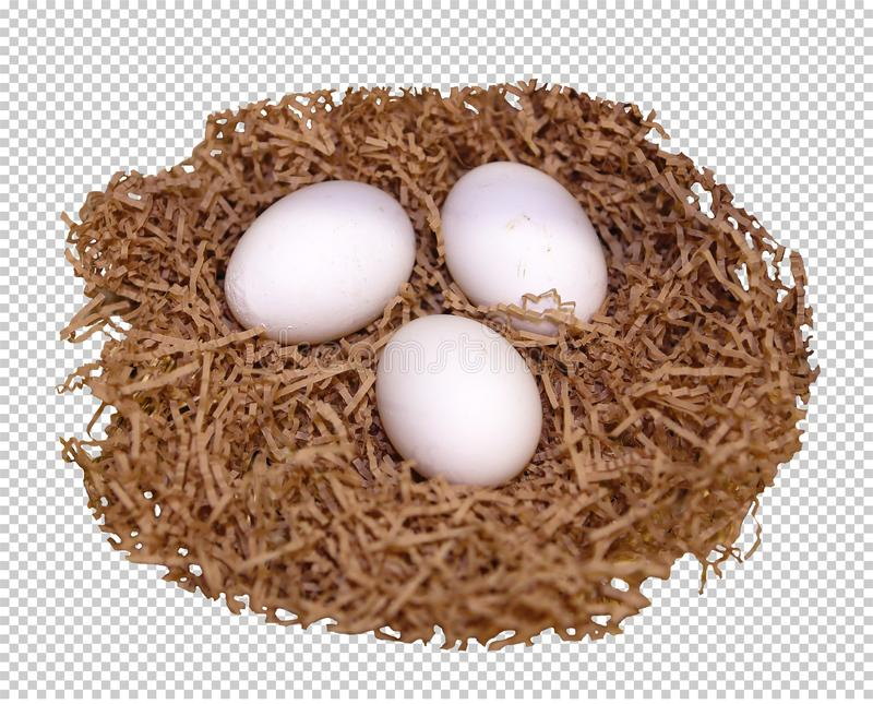 Three white eggs lie in the nest, transparent background, png. Three white chicken eggs lie on straw, in a nest, transparent background, png stock images