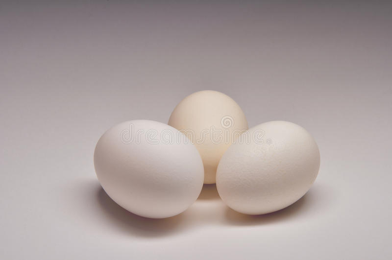 Three White Eggs royalty free stock images