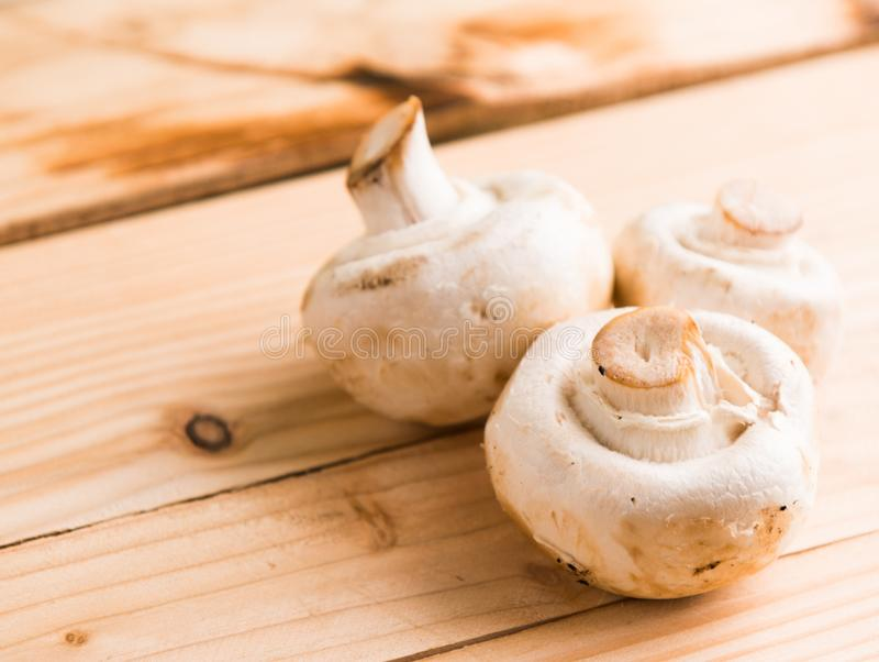 Three White Mushrooms on Beige Wooden Table stock photography