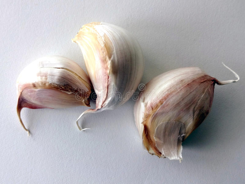 Three Whole Garlic Cloves with Skin On. Against a Blank Background royalty free stock photo