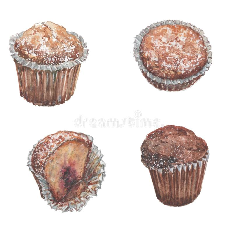Three whole muffins and one half on a white background. Watercolor royalty free illustration