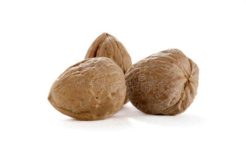 Three whole walnuts stock image