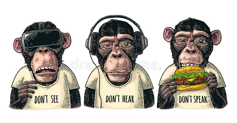 Three wise monkeys. Not see, not hear, not speak. Vintage engraving. Three wise monkeys in headphones, virtual reality headset,and burger. Not see, not hear, not vector illustration