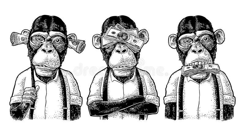 Three wise monkeys. Not see, not hear, not speak. Vintage engraving. Three wise monkeys with money on ears, eyes, mouth. Not see, not hear, not speak. Vintage vector illustration