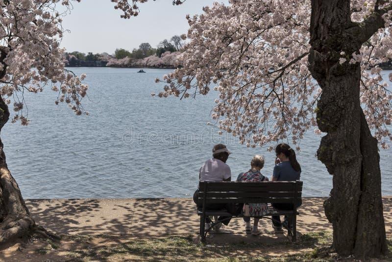 Three women on a bench in Washington, DC stock photo