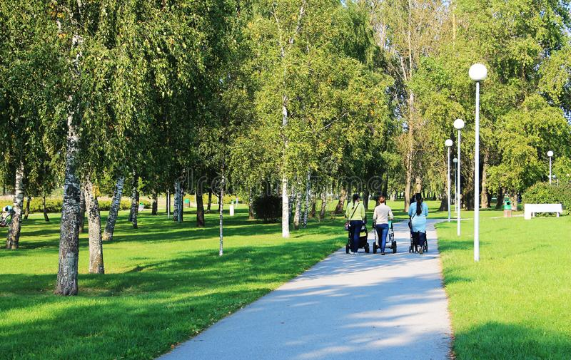 Three women in the park for a walk with the children. The view from the back stock photo