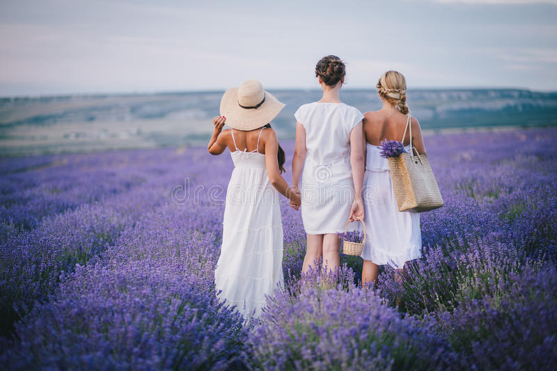 Three women posing in a lavender field. Three women friends in white dresses posing in a lavender field stock image