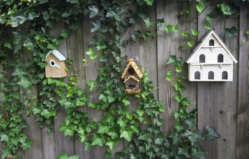 Three wooden birdhouses on a fence royalty free stock photography