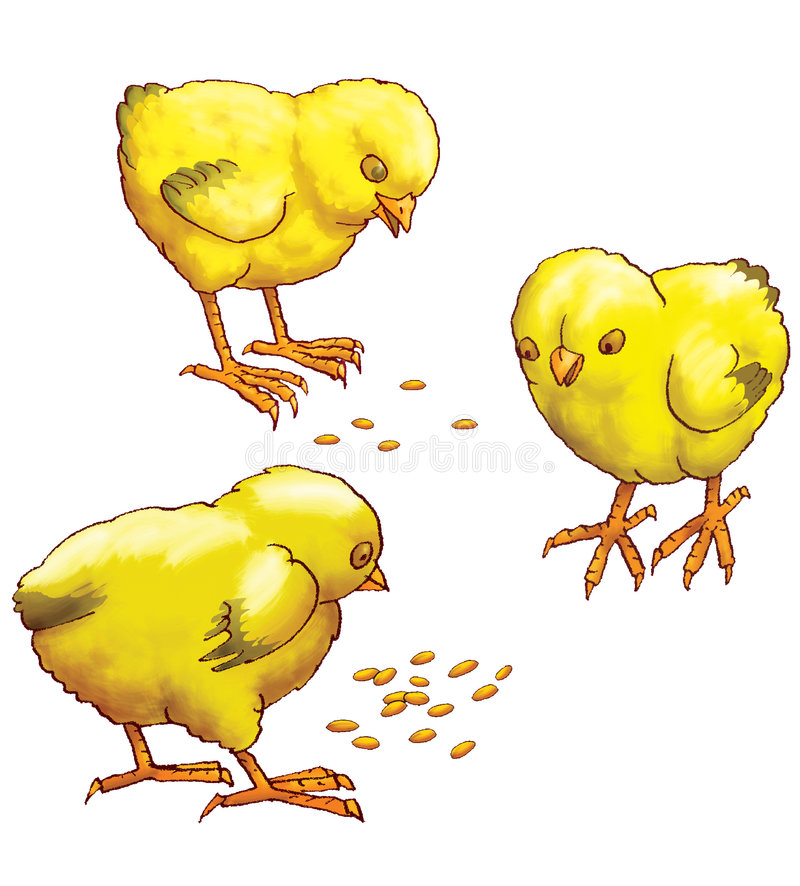 Download Three yellow chickens stock illustration. Image of housekeeping - 6091759