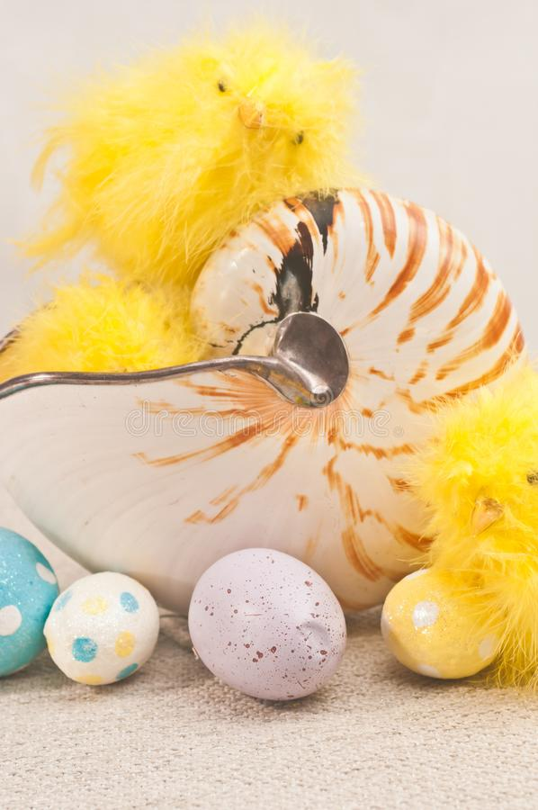 Three, yellow, stuffed, baby chicks in nautilus shell and  and four, easter, candy eggs stock images