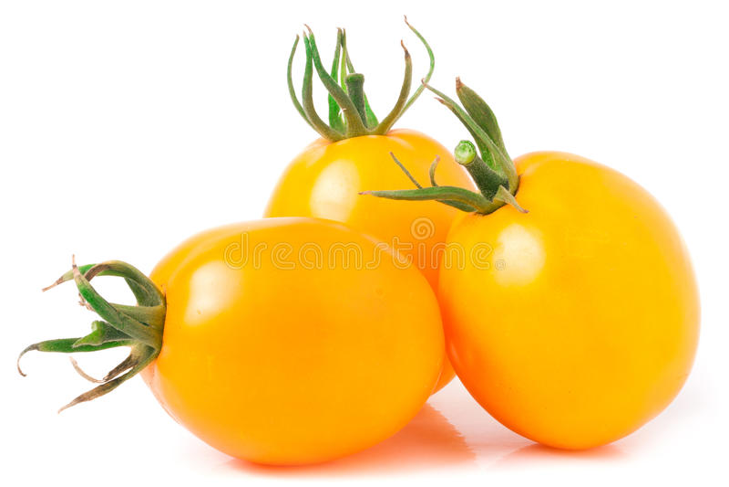 Three yellow tomato isolated on white background.  stock images
