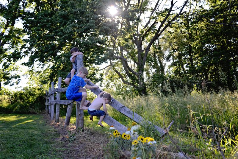 Three young brothers climbing fence on farm stock photography