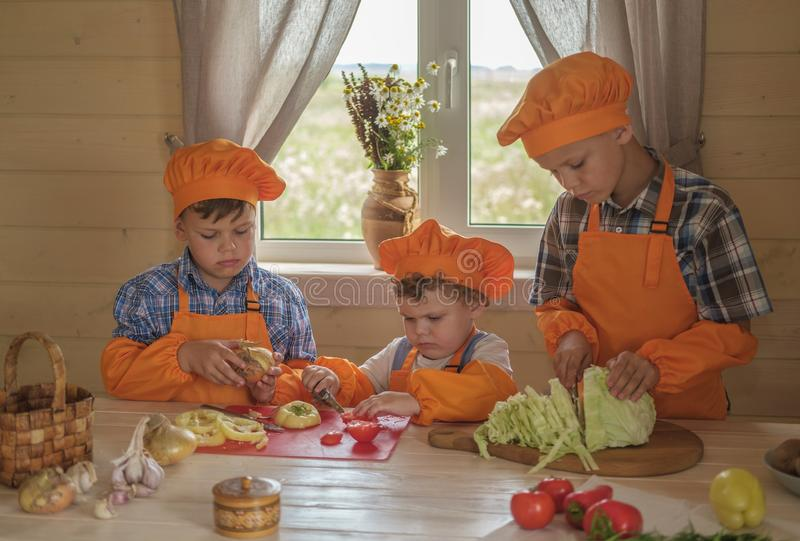 Three young chefs cut vegetables for vegetarian soup on a table in a country house. three brothers in suits cooks prepare royalty free stock image