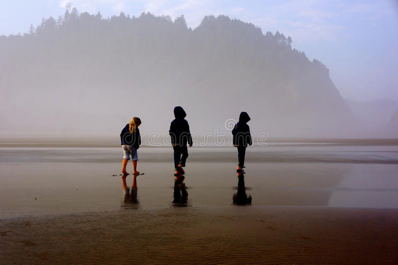 Children on foggy beach stock photo