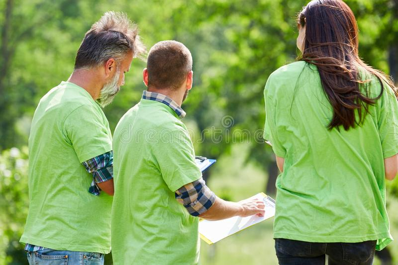 Three young conservation activists as a team. Three young conservationists as a team in the park during a project planning royalty free stock photo