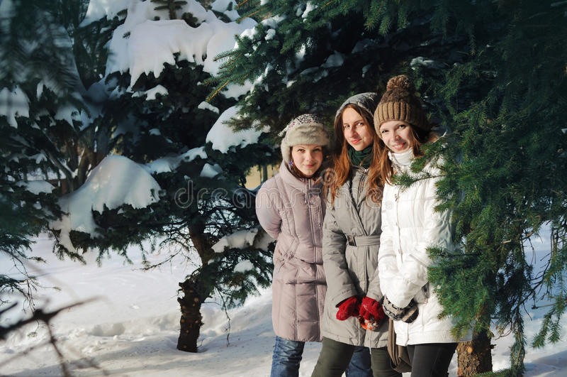 Three young girls among spruce brunches in winter stock photography
