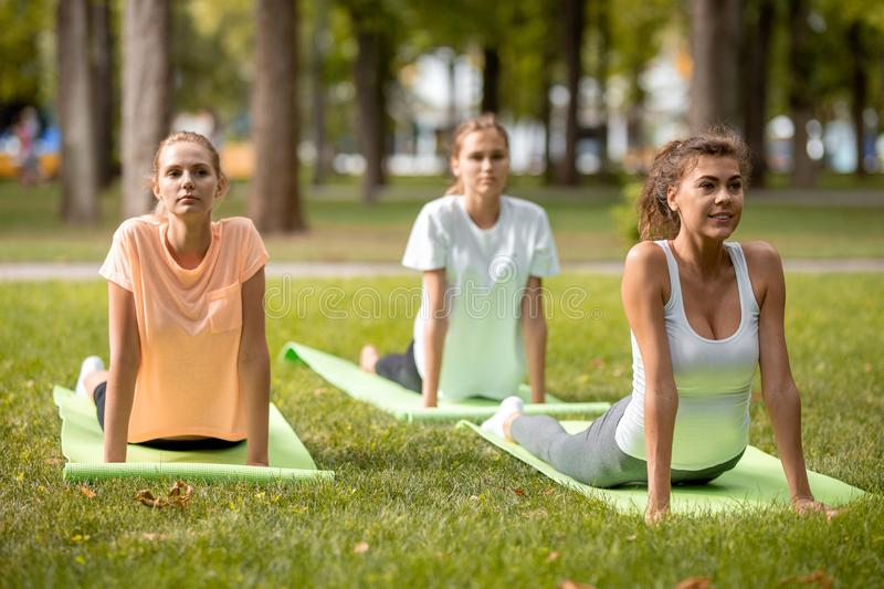 Three young slim girls doing stretching on yoga mats on green grass in the park on the open air stock image