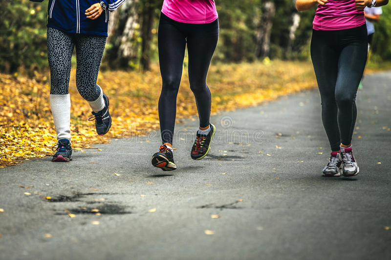 Three young women runners. Sports in autumn forest. physical activity in nature royalty free stock photo