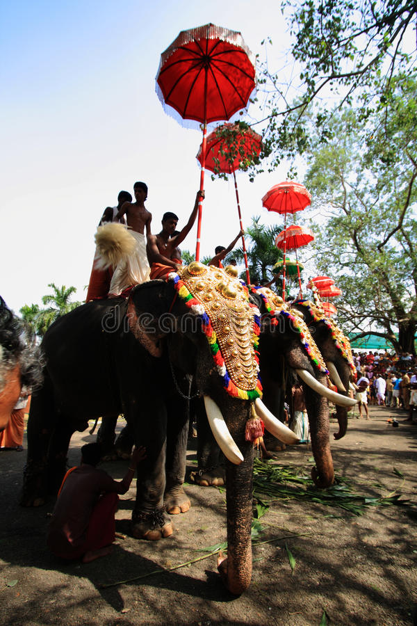 Thrissur Pooram obraz stock