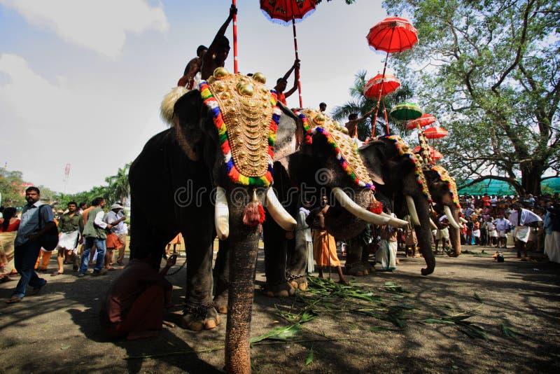 Thrissur Pooram immagine stock libera da diritti