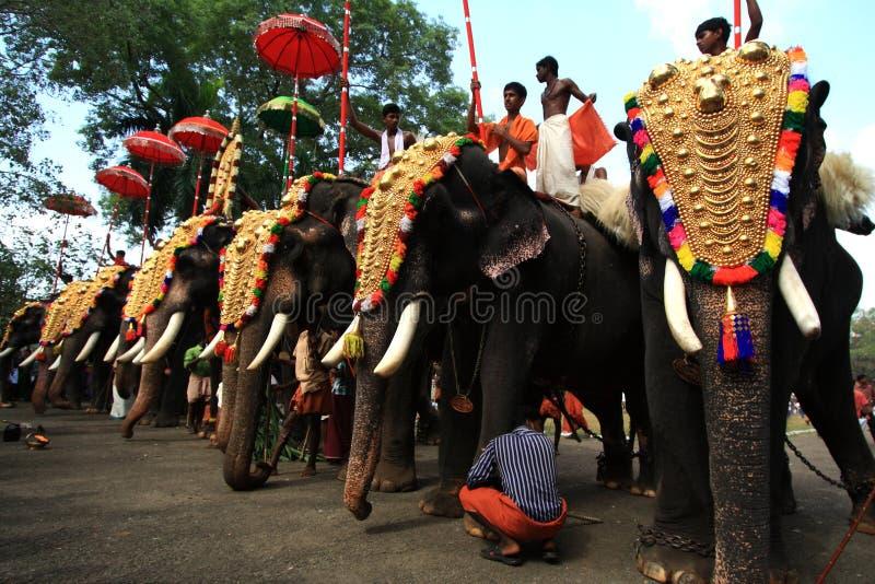 Thrissur Pooram images libres de droits