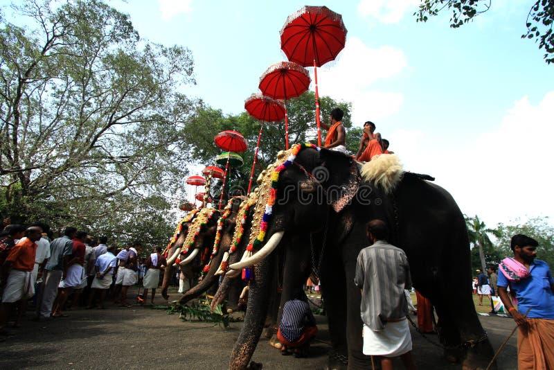Thrissur Pooram image libre de droits