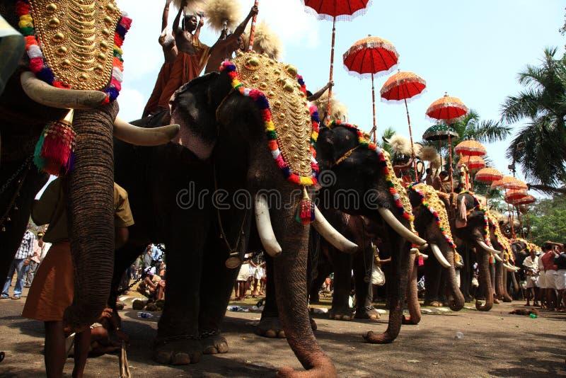 Thrissur Pooram photographie stock libre de droits