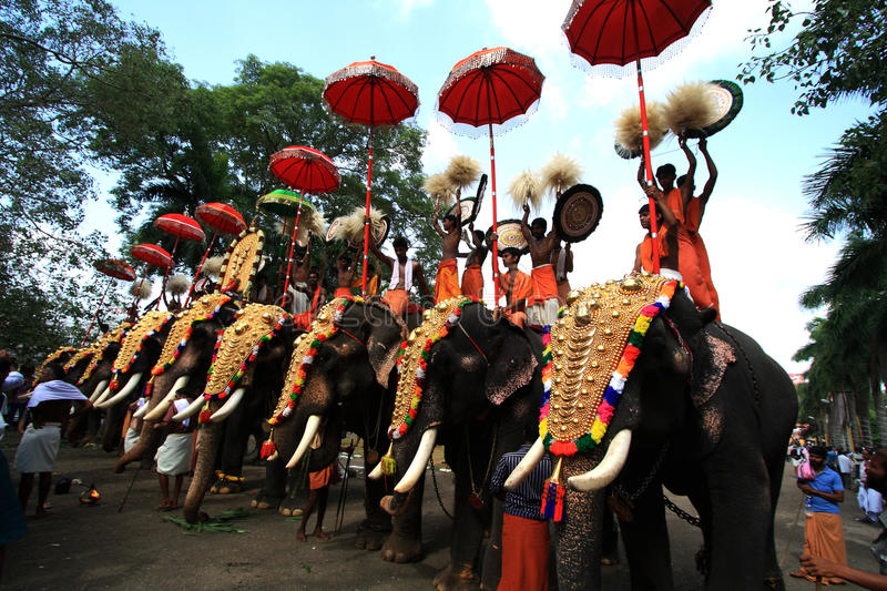 Image result for thrissur pooram