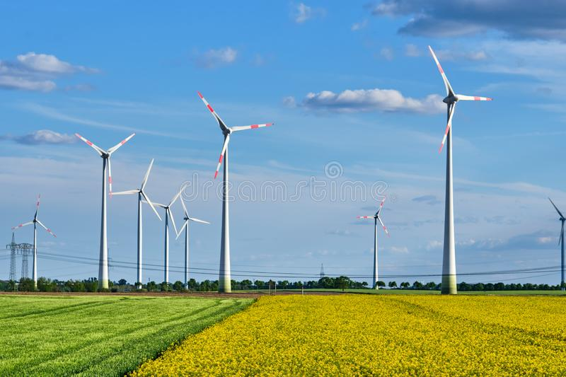Thriving rapeseed field with wind turbines and power lines. Seen in Germany royalty free stock photography