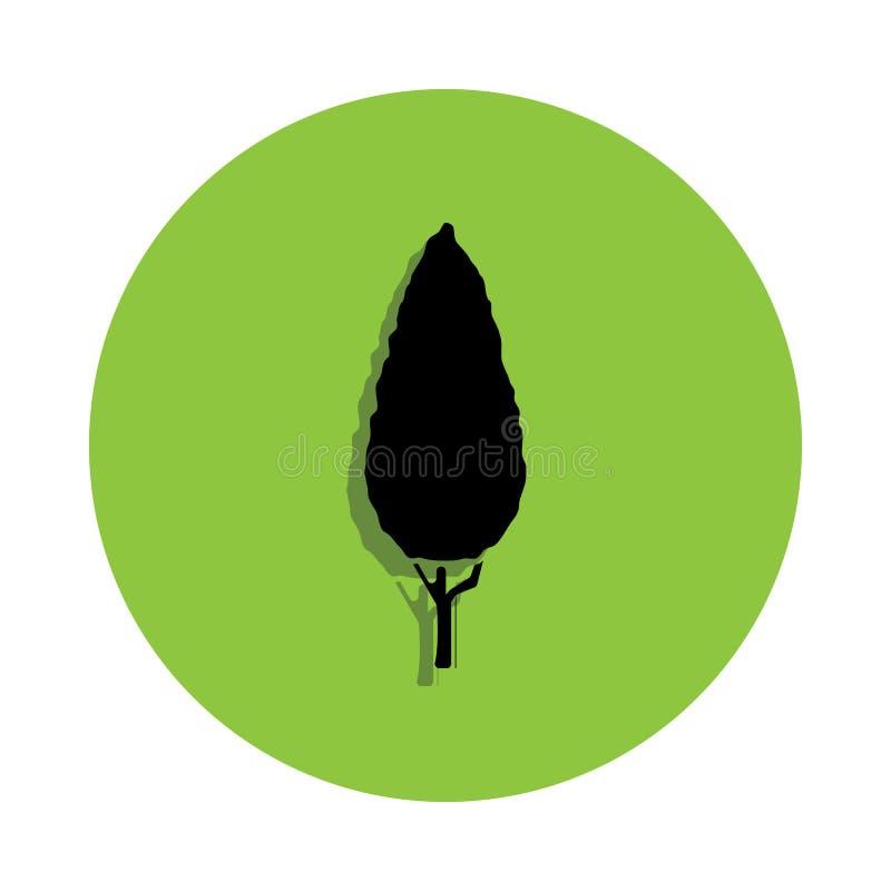 Thuja Albero nero nell'icona verde del distintivo illustrazione vettoriale