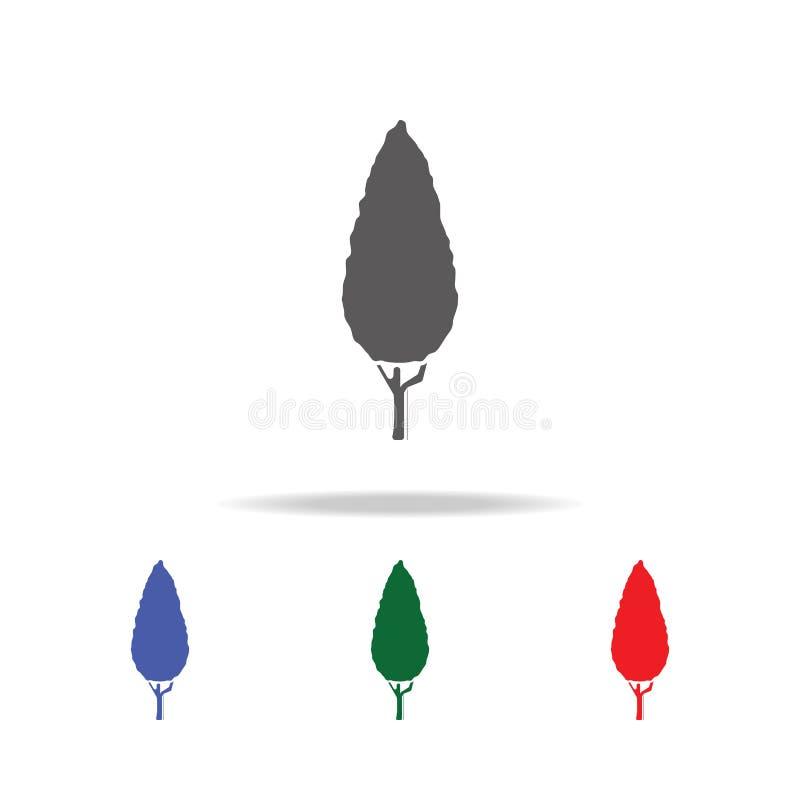 Thuja Icona nera dell'albero Elementi degli alberi nelle multi icone colorate Icona premio di progettazione grafica di qualità Ic illustrazione di stock