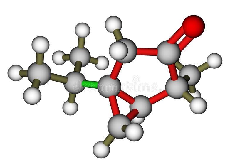 Thujone, compound with menthol odor. Thujone, a compound with menthol odor, a constituent of absinthe royalty free illustration