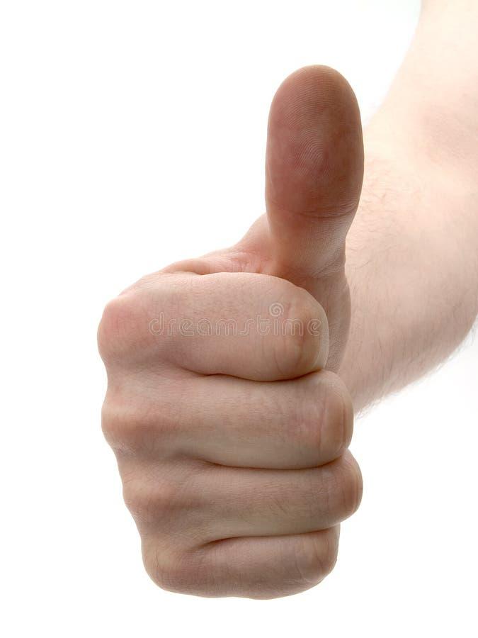 Thumb up. On white background royalty free stock photo