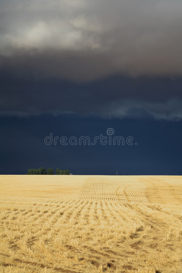The thunder-storm. In a countryside in state of Montana begins stock photo