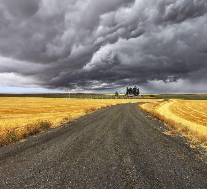 Thunder-storm acima de Montana. fotos de stock