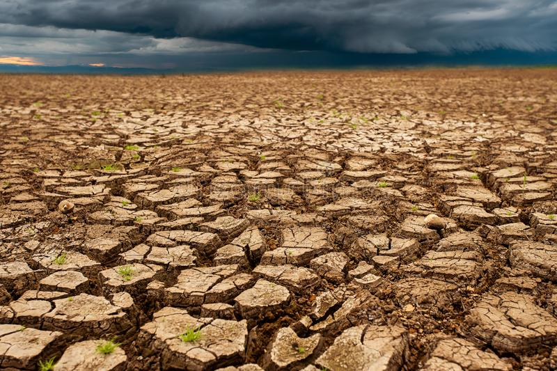 Thunder storm sky Rain clouds Cracked dry land without wate. Abstract, agriculture, arid, backgrounds, barren, bud, clay, concepts, copy, damage, dead, desert stock image