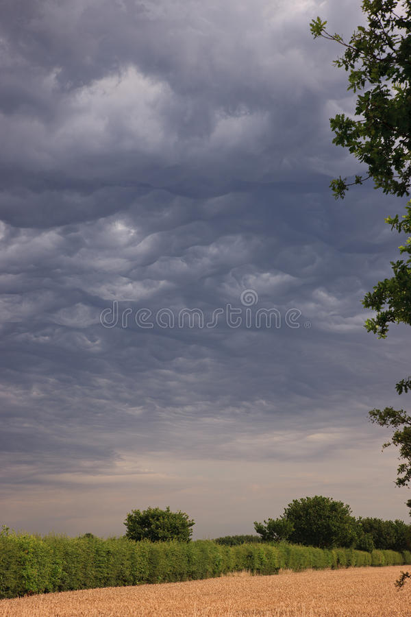 Download Thunder Storm stock photo. Image of danger, natural, dangerous - 32679532