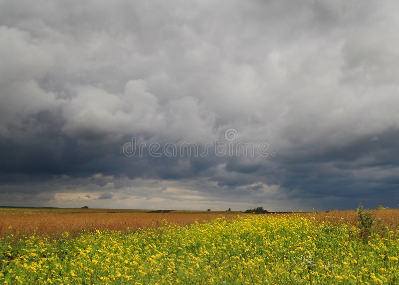 Before thunderstorm stock photography