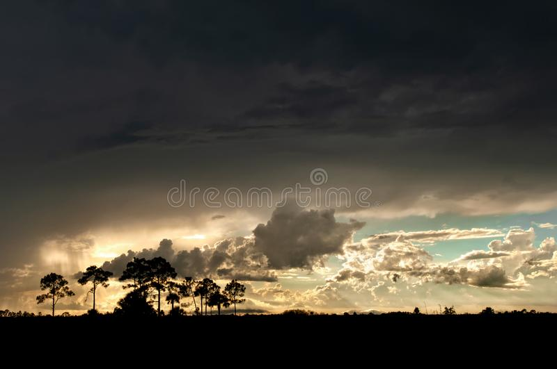 A thunderstorm sweeps over the Everglades royalty free stock photo