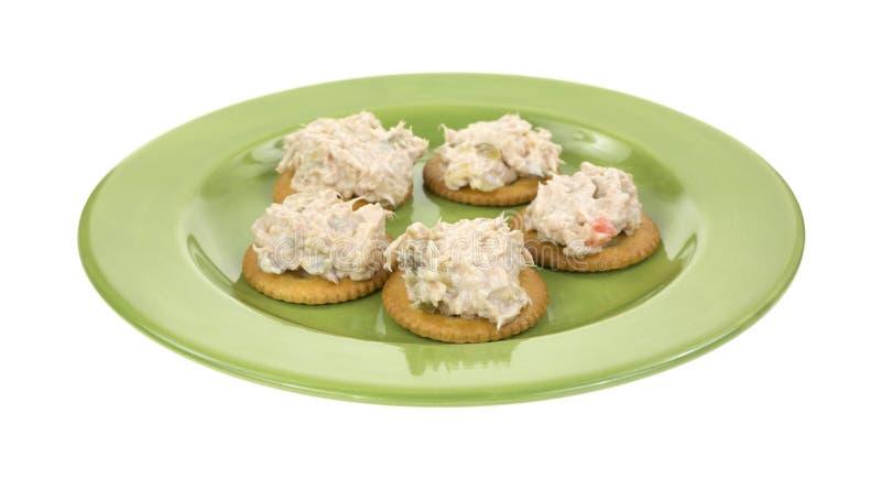 Thunfischsalat auf Crackern lizenzfreie stockfotos