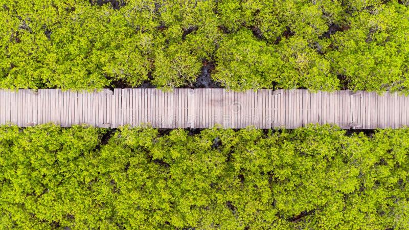 Thung橛皮带,罗勇,泰国鸟瞰图  免版税图库摄影