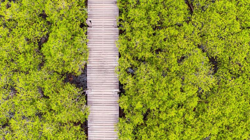 Thung橛皮带,罗勇,泰国鸟瞰图  图库摄影