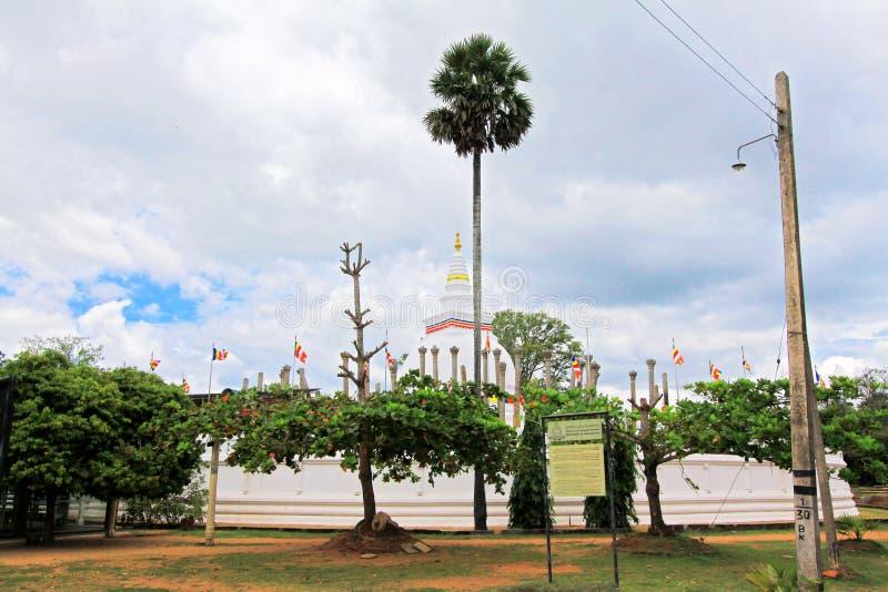 Thuparamaya Dagoba,斯里兰卡联合国科教文组织世界遗产名录 免版税库存照片