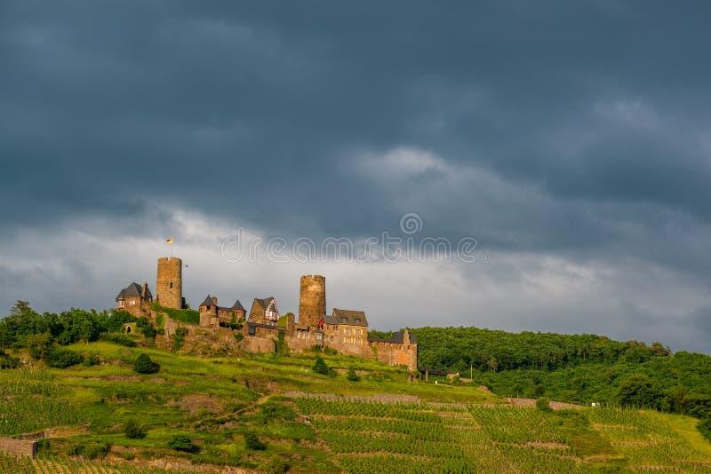 Thurant slott och vingårdar ovanför den Moselle floden nära Alken, Tyskland arkivfoton